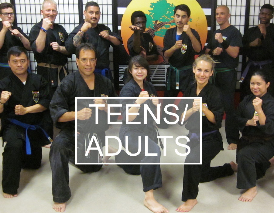USSD Adults Programs